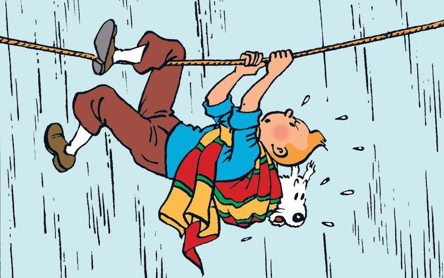 Wire Fox Terrier Tintin dog snowy