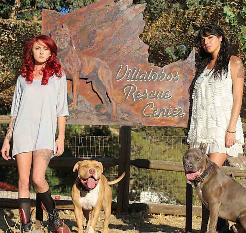 Pitbulls and Parolees Villalobos