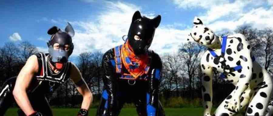 Human Puppies Men dress like dogs